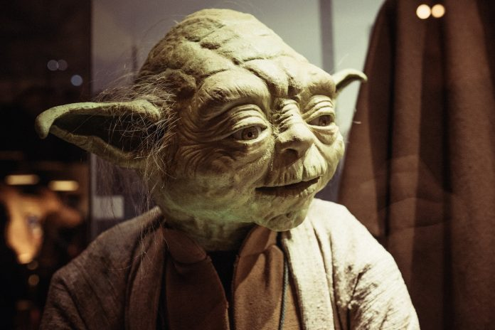Jedi master Yoda, this photo depicts