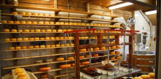 A cheese factory