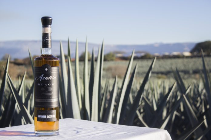 A bottle of tequila, with blue agave plants in the background