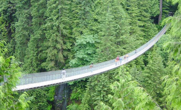 The Capilano Suspension Bridge