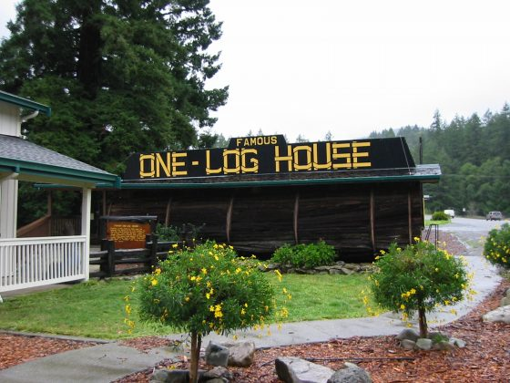 The One-Log House