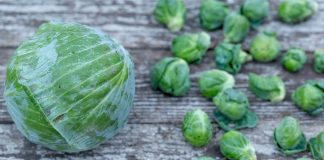 Cabbage and Brussels sprouts