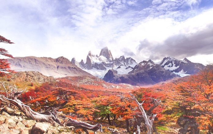 Autumn colors of Patagonia